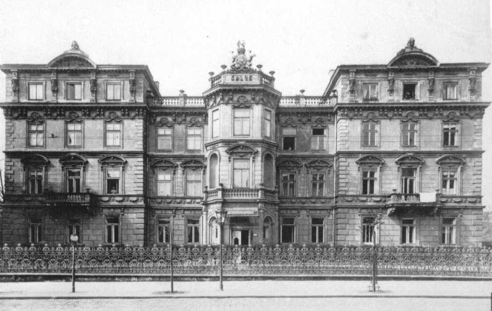 Замок со стороны ул. Старовисльной
